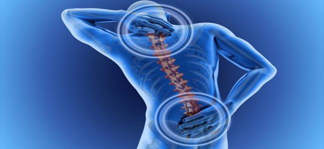 Mal di schiena cause psicosomatiche - Chateraphy